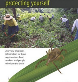 Protect yourself against ticks